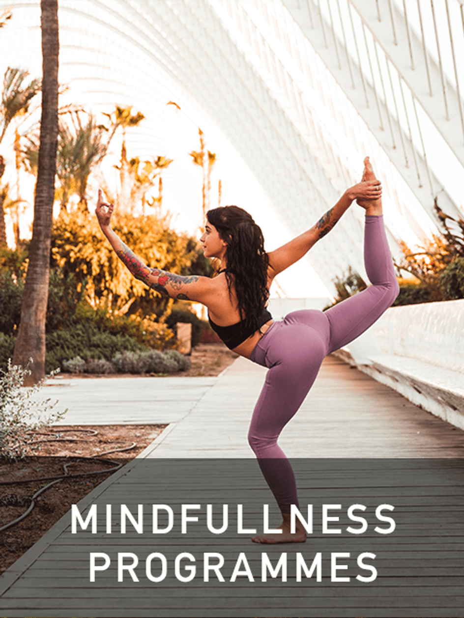mindfulness programmes